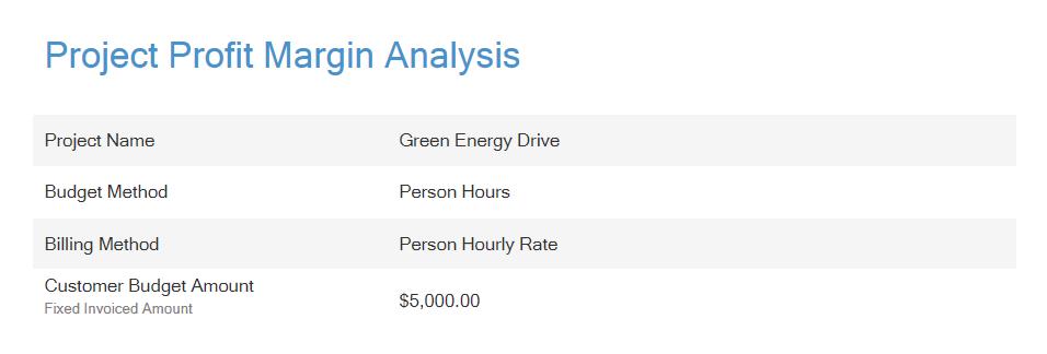 Project Profit Margin Analysis Header